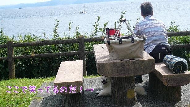 08.10.12観音崎公園④jpg.jpg