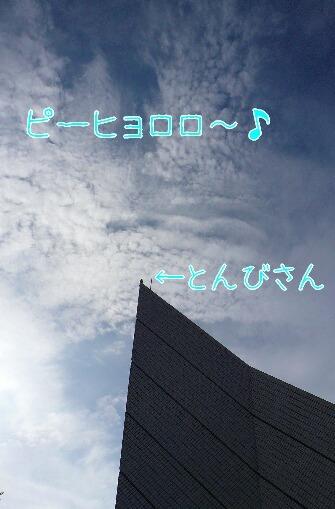08.10.12観音崎公園⑨.jpg