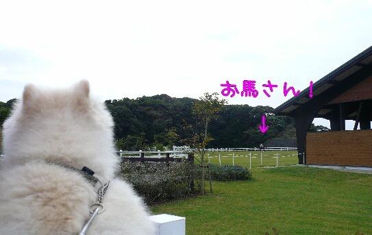 08.10.24-25房総旅行⑮.jpg