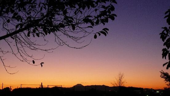 08.11.20-23公園の夕日いろいろ④.jpg