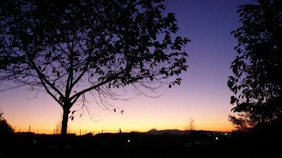 08.11.20-23公園の夕日いろいろ⑤.jpg