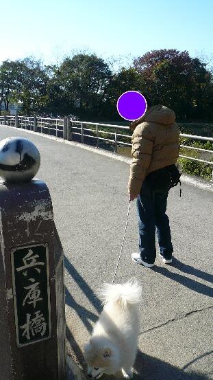 08.11.21-22多摩川~観音崎公園①.jpg