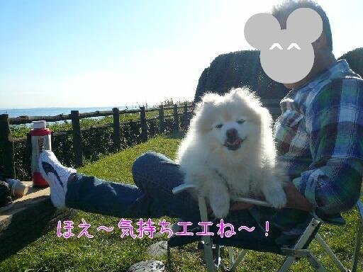 08.11.21-22多摩川~観音崎公園⑩.jpg