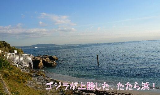 08.11.21-22多摩川~観音崎公園⑪.jpg