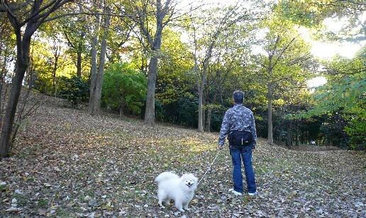 08.11.21-22多摩川~観音崎公園⑮.jpg