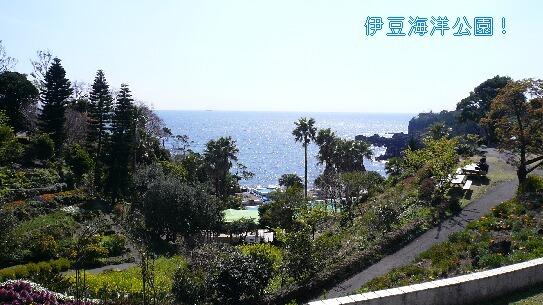 09.3.14-15伊豆旅行⑮.jpg