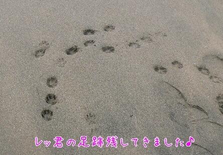 10.1.9-11房総旅行23.jpg