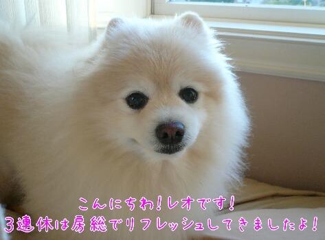 10.1.9-11房総旅行24.jpg