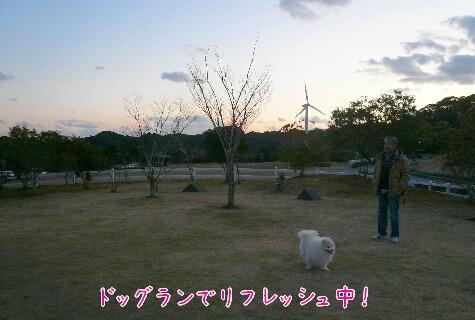 10.1.9-11房総旅行⑥.jpg