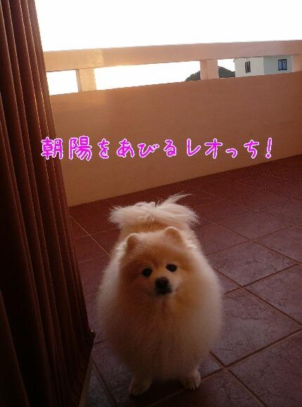 10.1.9-11房総旅行⑨.jpg