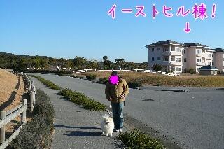 10.1.9-11房総旅行⑯.jpg