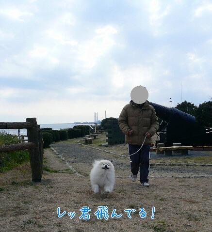 10.2月中旬観音崎④.jpg