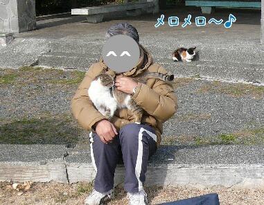 10.2月中旬観音崎⑧.jpg