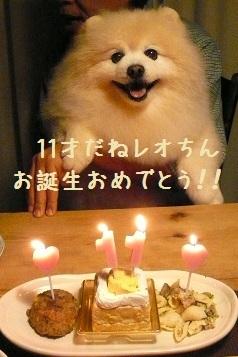 2012.0303レオお誕生日!①.jpg
