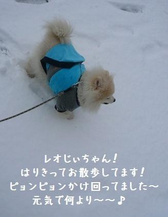 2012.0303レオお誕生日!④.jpg
