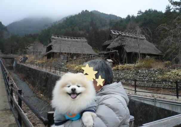 2012.3-4月河口湖&桜開花⑤.JPG