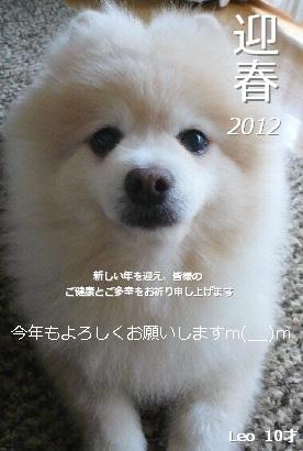 2012年始の挨拶.jpg